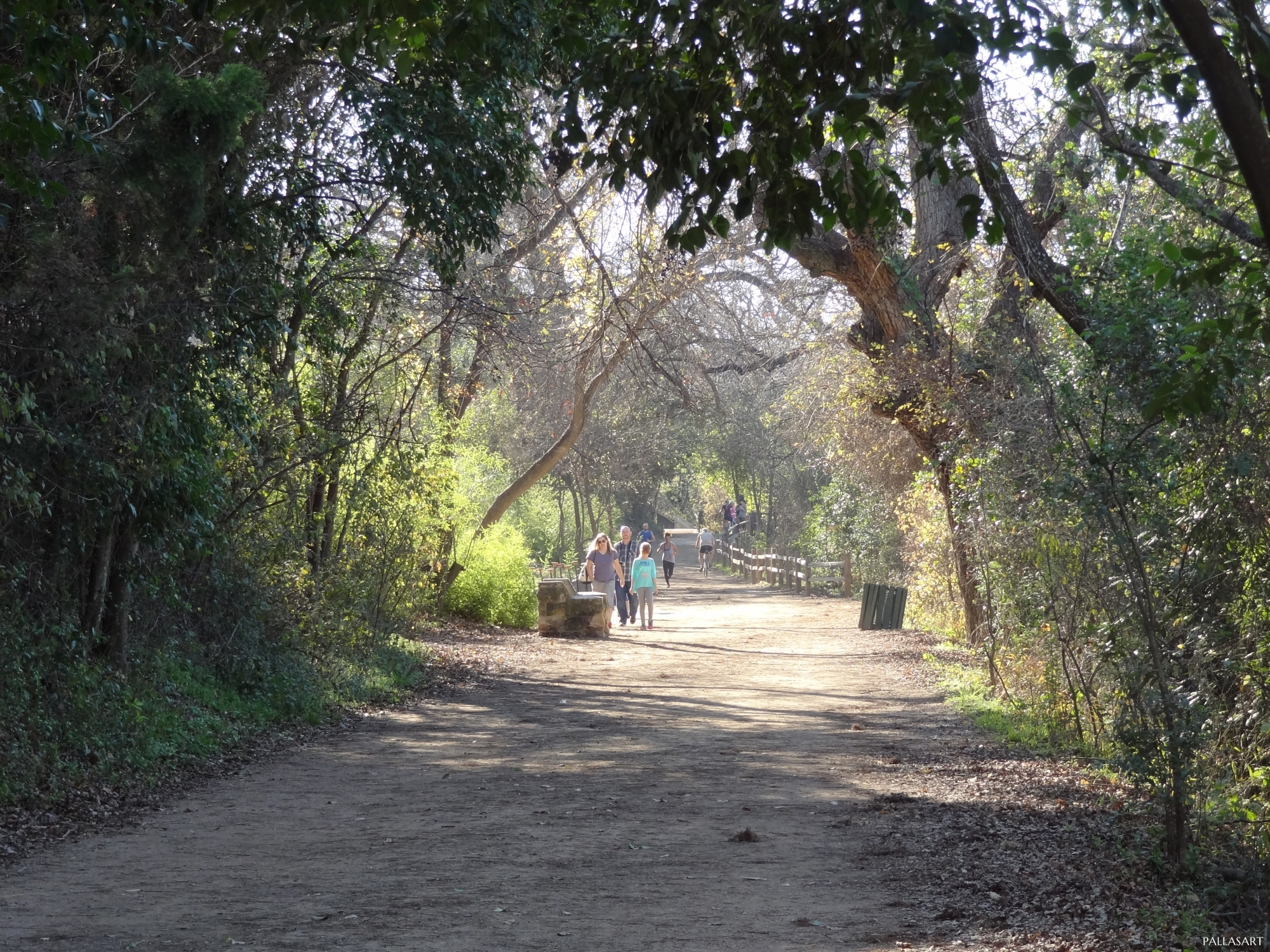 Butler Hike And Bike Trail In Austin Tx Free Photos Of