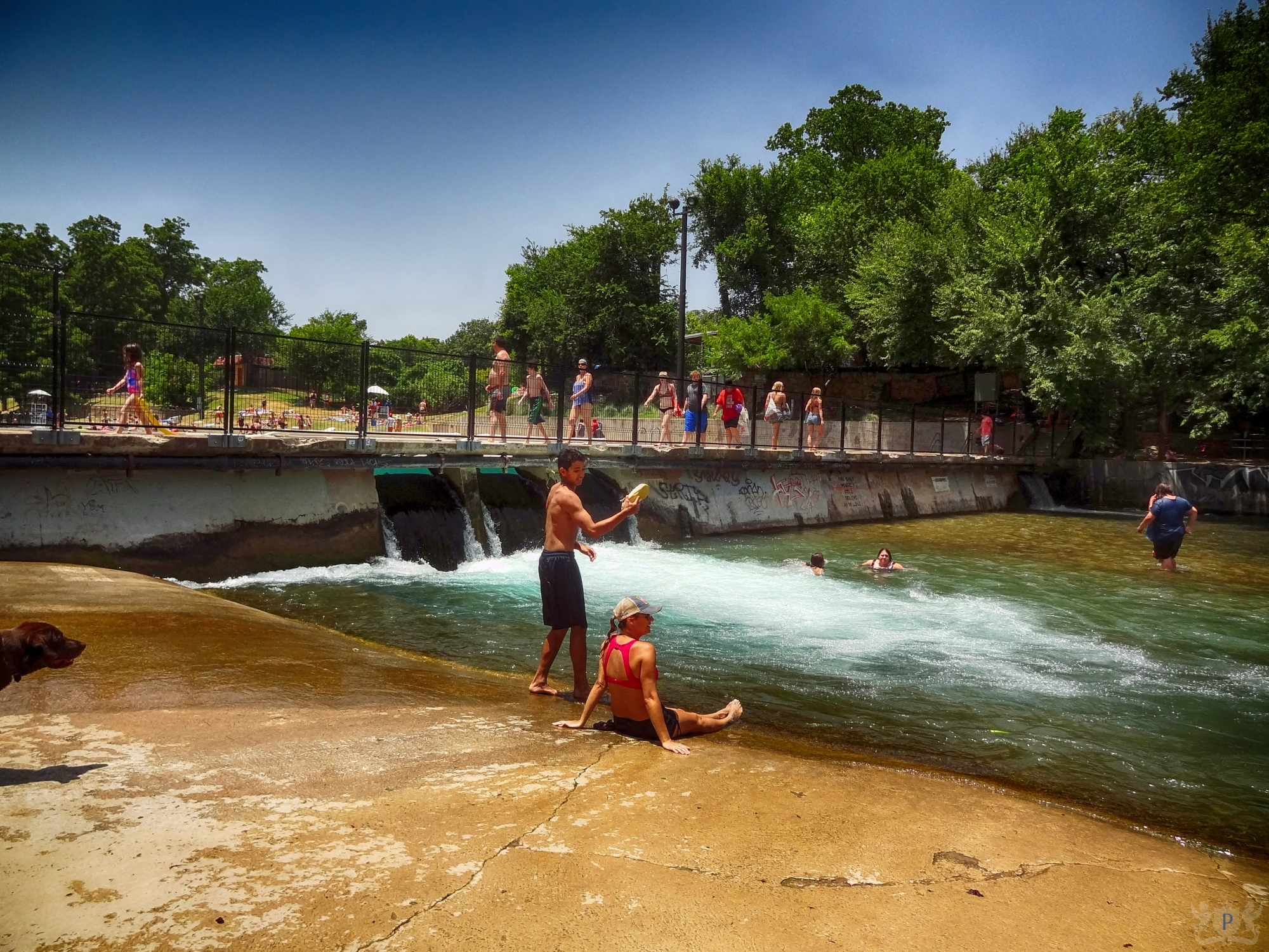 Free Area Outside Barton Springs