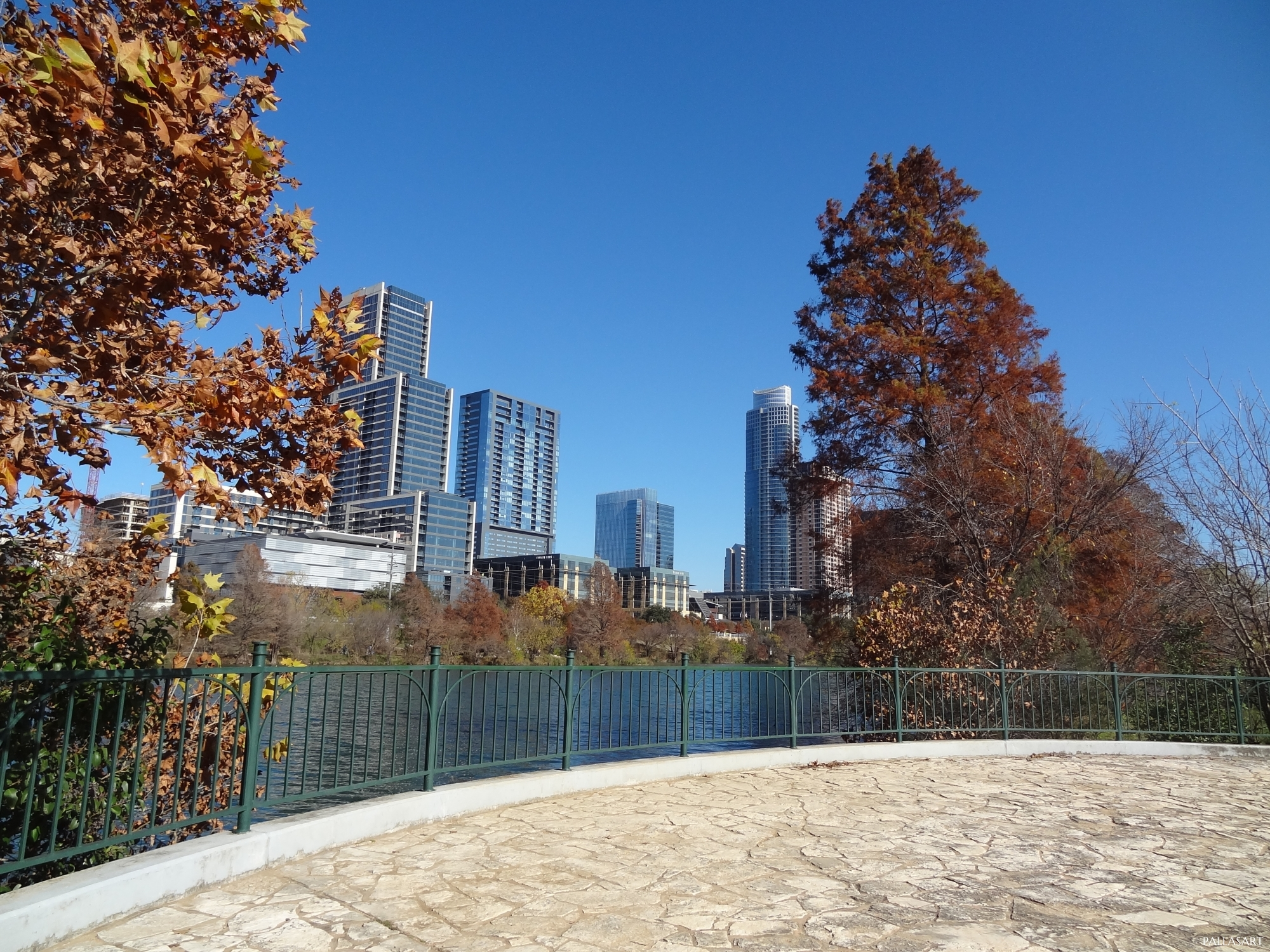 Fall in Downtown Austin, Texas