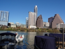 Swan pedal boat in Austin, Texas