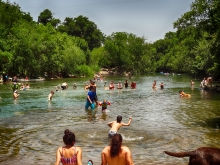 Austin's Barking Spings Just Outside Barton Springs